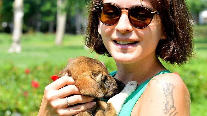 Kedi, köpek ve gelinciklere mikroçip ve pasaport…