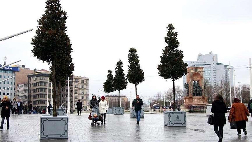 Taksim Meydanı'na saksı ağaçlar!