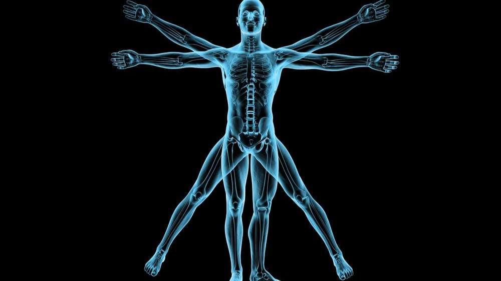 İnsan vücuduyla ilgili şaşırtıcı bilgiler