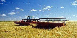 Tarımda büyük fiyat artışı