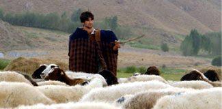 Çobanların adı değişti