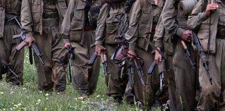 İşte PKK'nın beş aylık eylem bilançosu
