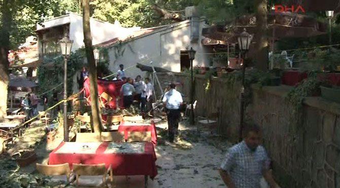 Beykoz'da ağaç faciası: 2 ölü