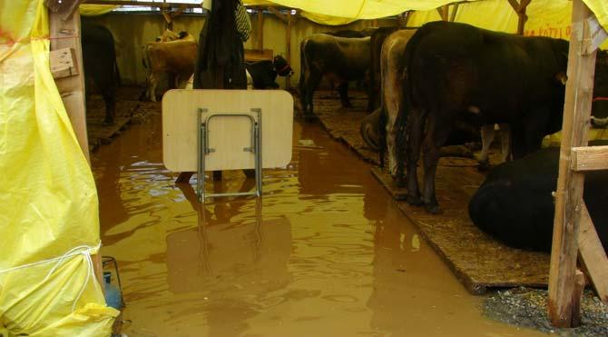 Kurban pazarını su bastı!