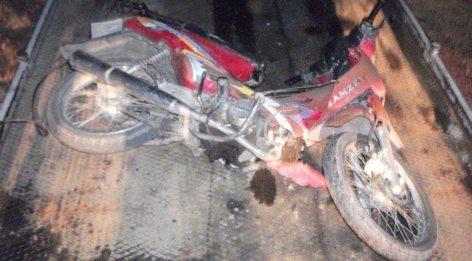 Manisa'da motosiklet domuza çarptı: 1 yaralı