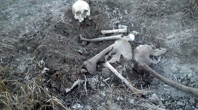 Koyun otlatırken iskelet buldu