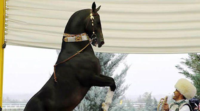 Erdoğan'a at hediye ettiler
