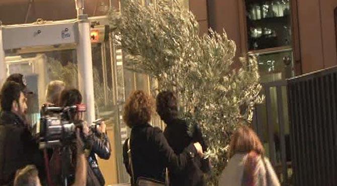O ağaçlarla İstanbul'da eylem!