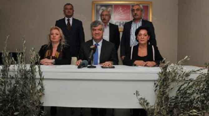 CHP Yırca'ya zeytin fidanı dikecek