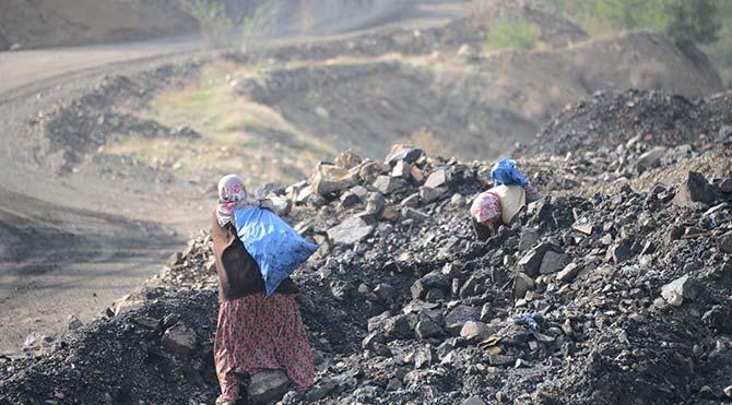 Facia ocağından çıkan hafriyatta kömür topluyorlar