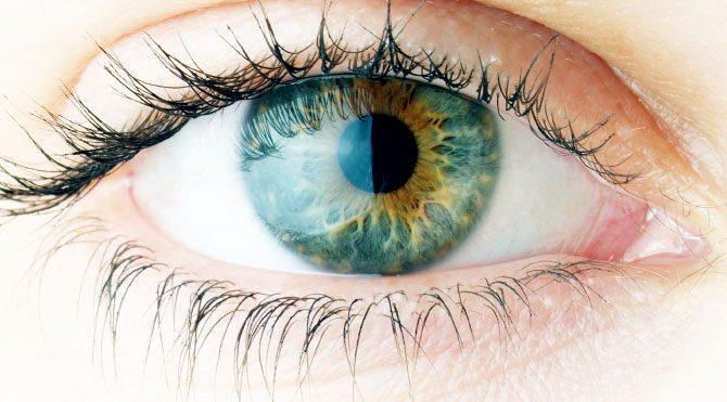 Görme kaybının önlemi: Erken teşhis!
