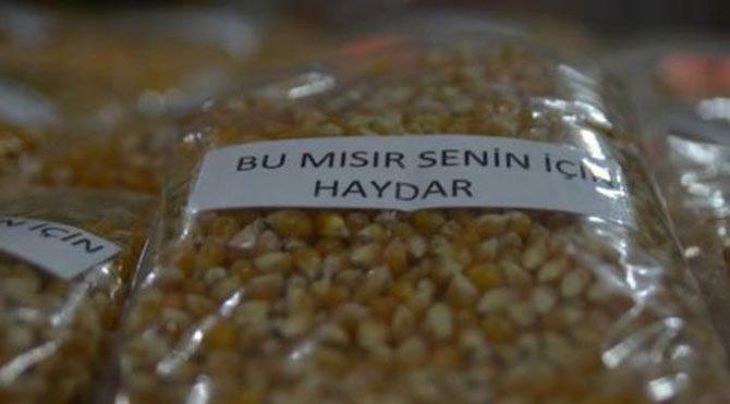 'Bu mısır senin için Haydar'