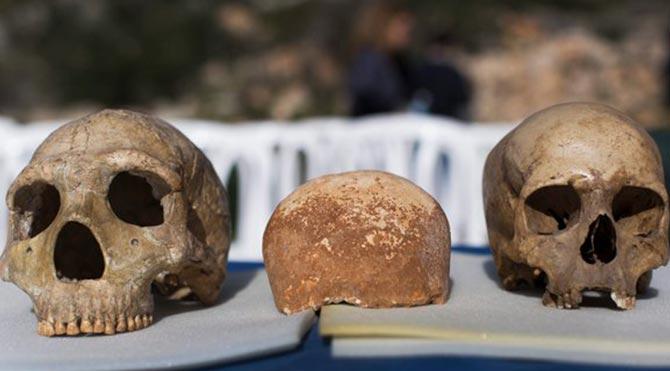 İsrail'de bulunan 55 bin yıllık kafatası bilim dünyasını heyecanlandırdı