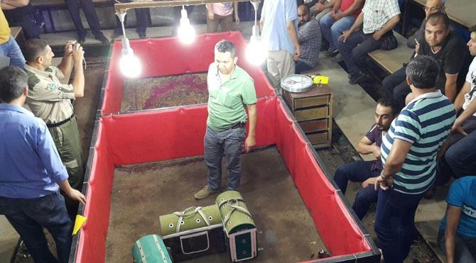 Horoz dövüşüne baskın: 20 gözaltı