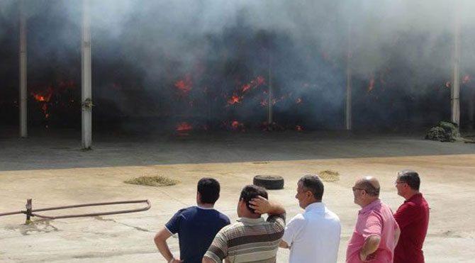 Aziz Yıldırım'ın kardeşi Ali Yıldırım'ın çiftliği yandı
