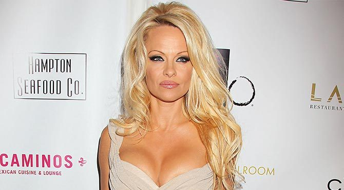 Pamela Anderson'dan Putin'e yemek daveti