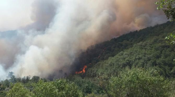 Gülnar'da kızılçam ormanı yanıyor!