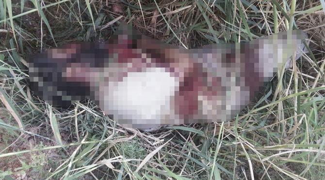 Flaş iddia: 35 IŞİD teröristi öldürüldü!