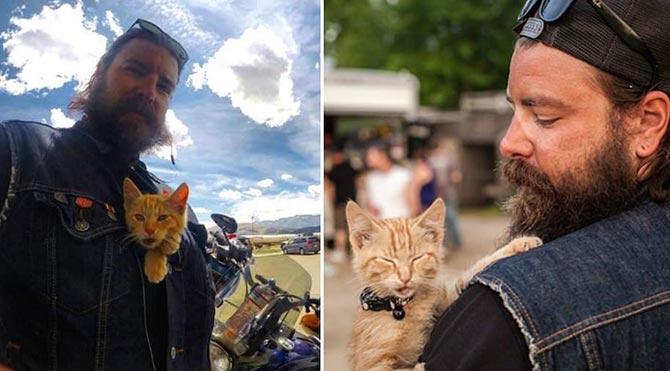 Kurtardığı kediyle ülkeyi gezen motorcu