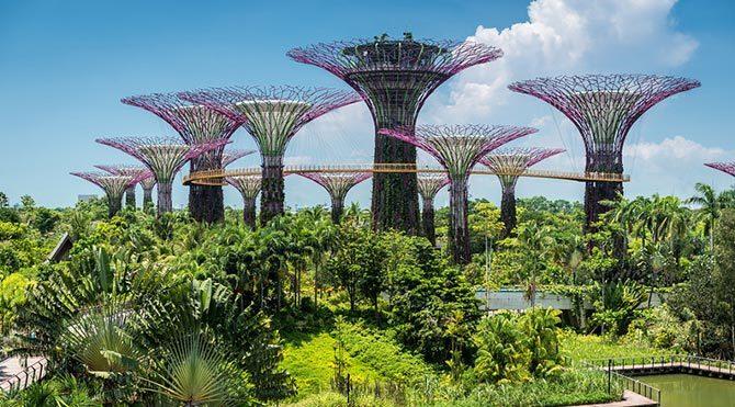 Güneş enerjisiyle çalışan yapay ağaçlar
