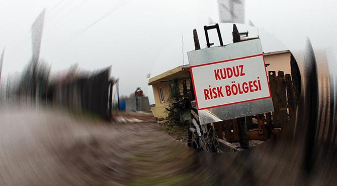 Karabük'te köyde kuduz karantinası