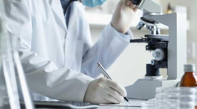 Türk bilim insanlarının çalışmasına Harvard'tan ortaklık teklifi!