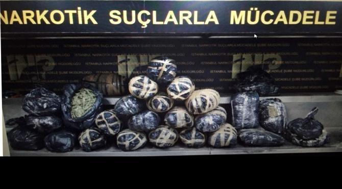 Üsküdar`da 82 kilogram hintkeneviri yakalandı