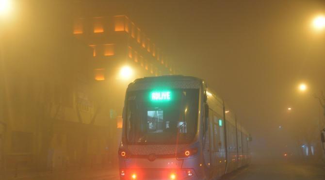 Yoğun sis kara ve hava ulaşımını olumsuz etkiledi