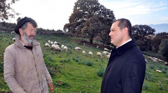 Milletvekili Öz, dağda çoban ziyaretinde koyun güttü