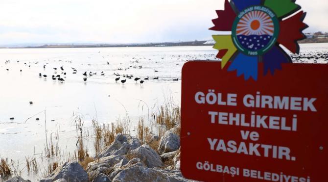 Mogan Gölü buz tuttu, aç kalan kuşlara yem atıldı