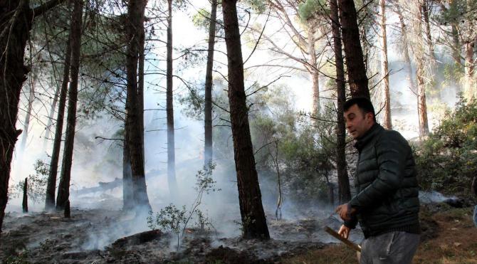 Tarihi Gelibolu Yarımadası`nda korkutan orman yangını