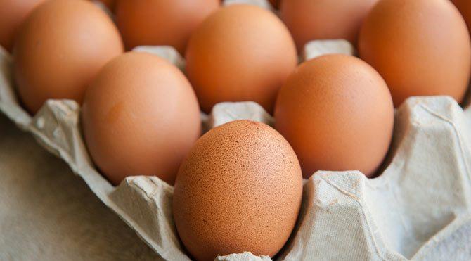 Yumurtada son iki gün