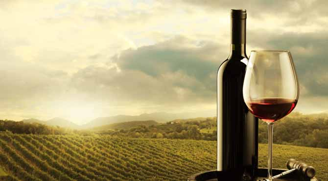 1 kadeh şarap 1 saat spora eşdeğer!