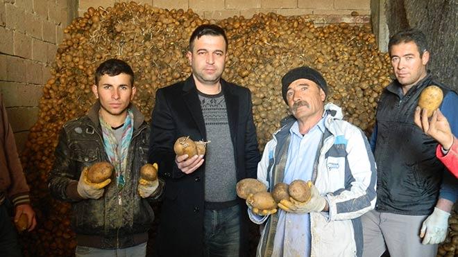 Komşularla yaşanan sorun patatesi vurdu