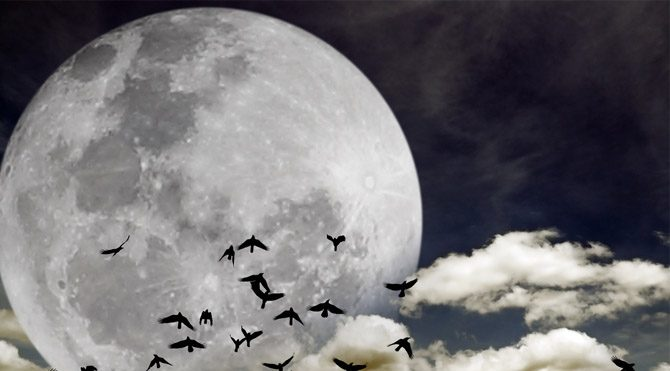 Yeni Ay, Dolunay, Son Dördün ve Karanlık Ay nedir?