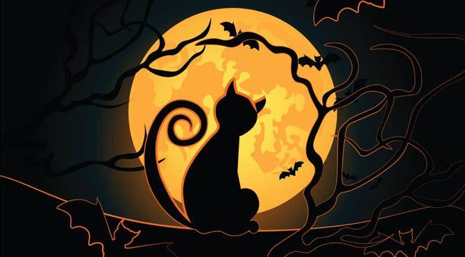 25 Ocak Pazartesi Ay günü... Ay Aslan burcunda boşlukta olacak