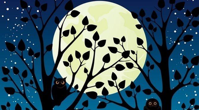 23 Ocak Cumartesi Satürn günü… Parti zamanı…