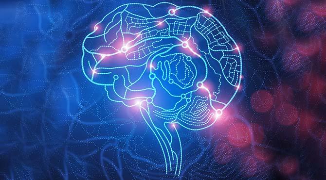 Nörobilimin yeni keşfi: İnsan beyni 4,7 milyar kitabı depolayabilir