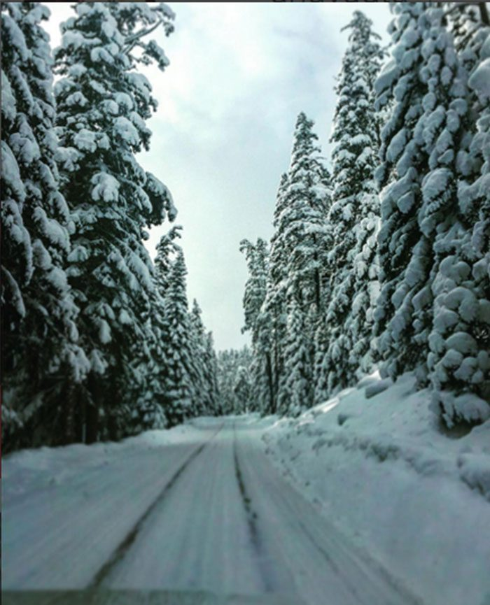 Kar manzarası