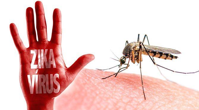 DSÖ'den Zika virüsü açıklaması
