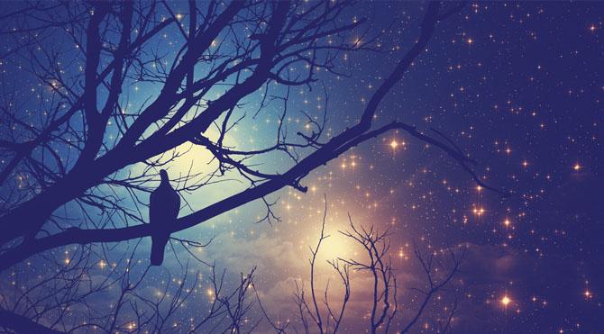 Astrolojide Chiron; psikolojik olarak zorlandığımız, kendimize yetemediğimiz, yara aldığımız (fiziksel veya psikolojik) fakat bizim üstesinden gelemediğimiz, yaralandığımız konularla ilgili bir başkasına maddi veya manevi yararımızın dokunduğu noktaları işaret eder.