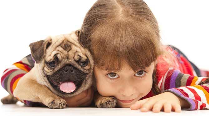 Çocuğunuzu bir hayvanla büyütmek için nedenler