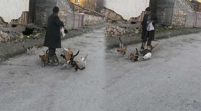 Emekli maaşıyla sokak hayvanlarını besliyor