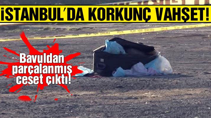 Bavuldan kadın cesedi çıktı!