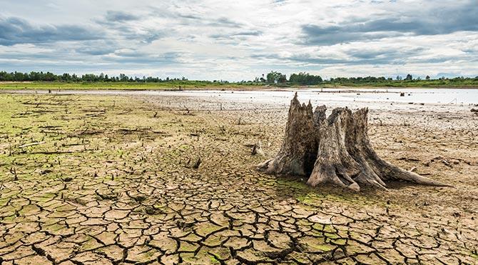 Amerika'ya mega kuraklık geliyor