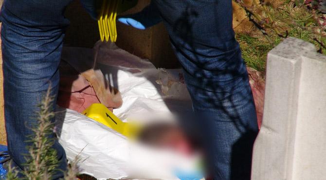 İstanbul'da vahşet: Mezarlıkta bebek cesedi