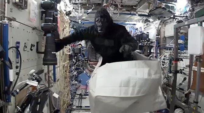 Astronotlardan uzayda goril şakası