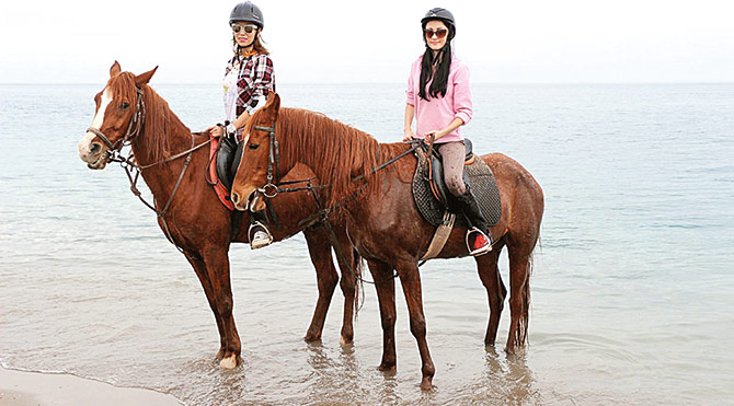 At üstünde plaj turu