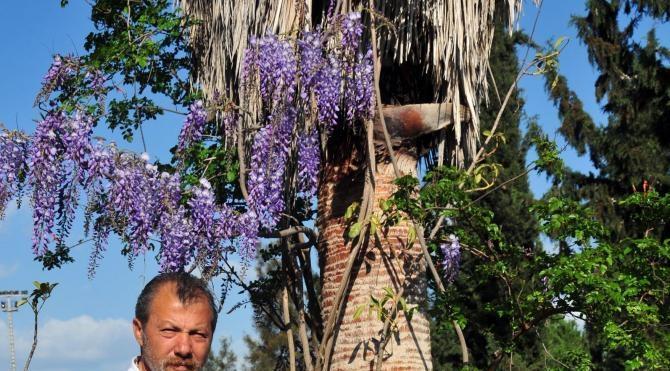 Türkiye'nin endemik bitki türleri Botanik Bahçesi'nde yaşatılacak