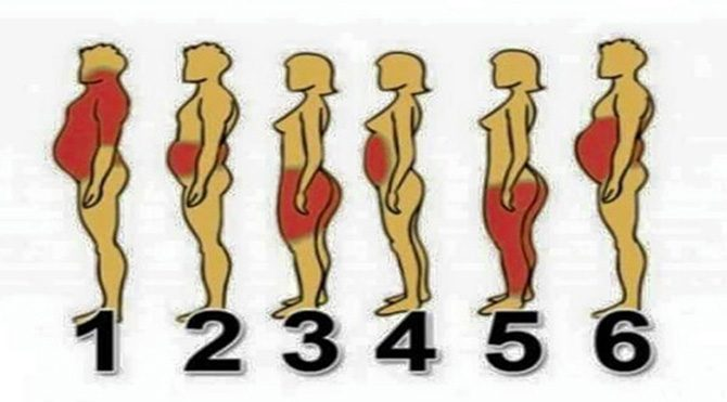 Siz kaç numarasınız?